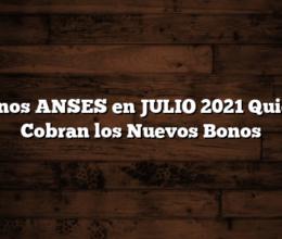 3 Bonos ANSES en JULIO 2021  Quienes Cobran los Nuevos Bonos