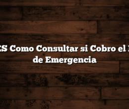 ANSES  Como Consultar si Cobro el BONO de Emergencia