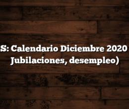 ANSES: Calendario Diciembre 2020 (AUH, Jubilaciones, desempleo)