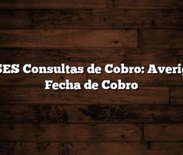 ANSES Consultas de Cobro: Averiguar Fecha de Cobro