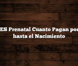 ANSES Prenatal Cuanto Pagan por mes hasta el Nacimiento