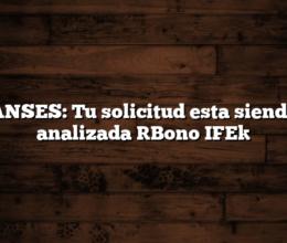 ANSES: Tu solicitud esta siendo analizada [Bono IFE]