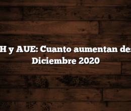 AUH y AUE: Cuanto aumentan desde Diciembre 2020