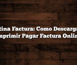 Antina Factura: Como Descargar e Imprimir  Pagar Factura Online