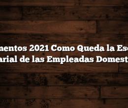 Aumentos 2021  Como Queda la Escala Salarial de las Empleadas Domesticas