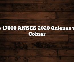 Bono 17000 ANSES 2020  Quienes van a Cobrar