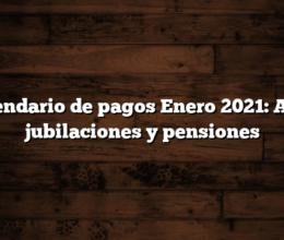 Calendario de pagos Enero 2021: AUH, jubilaciones y pensiones