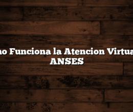 Como Funciona la Atencion Virtual de ANSES