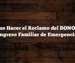 Como Hacer el Reclamo del BONO del Ingreso Familiar de Emergencia