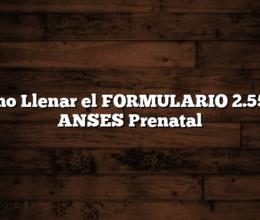 Como Llenar el FORMULARIO 2.55 de ANSES Prenatal