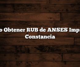 Como Obtener RUB de ANSES  Imprimir Constancia