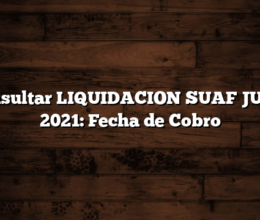Consultar LIQUIDACION SUAF JULIO 2021: Fecha de Cobro
