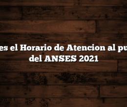 Cual es el Horario de Atencion al publico del ANSES  2021