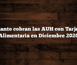 Cuanto cobran las AUH con Tarjeta Alimentaria en Diciembre 2020
