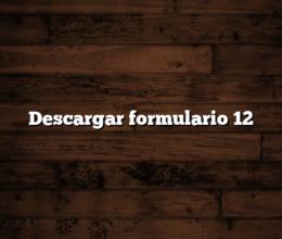 Descargar formulario 12