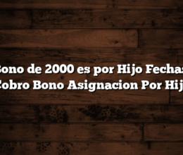El Bono de 2000 es por Hijo  Fechas de Cobro Bono Asignacion Por Hijo
