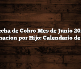 Fecha de Cobro Mes de Junio 2021 Asignacion por Hijo: Calendario de Pago