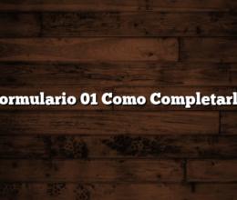 Formulario 01 Como Completarlo