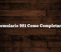 Formulario 981 Como Completarlo