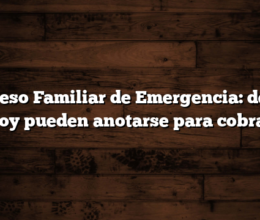 Ingreso Familiar de Emergencia: desde hoy pueden anotarse para cobrar