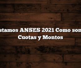 Prestamos ANSES 2021  Como son las Cuotas y Montos