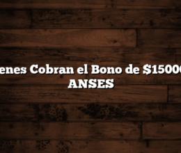 Quienes Cobran el Bono de $15000 de ANSES