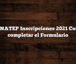 RENATEP Inscripciones 2021  Como completar el Formulario