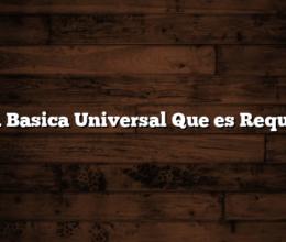 Renta Basica Universal  Que es  Requisitos
