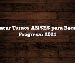 Sacar Turnos ANSES para Becas Progresar 2021