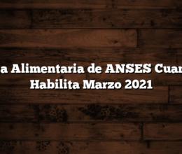 Tarjeta Alimentaria de ANSES  Cuando se Habilita  Marzo 2021